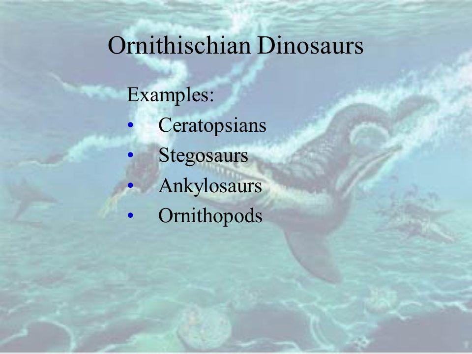 Ornithischian Dinosaurs Examples: Ceratopsians Stegosaurs Ankylosaurs Ornithopods