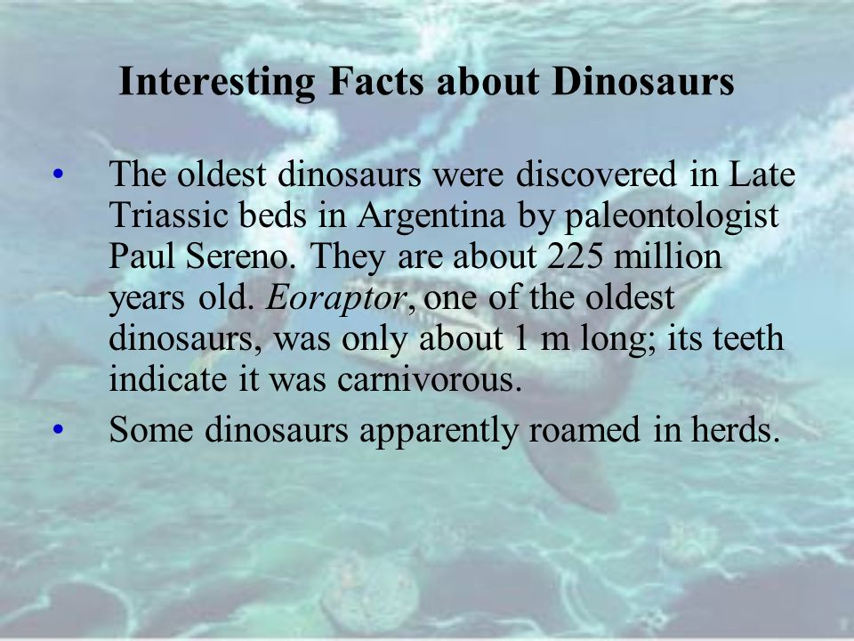 Interesting Facts about Dinosaurs The oldest dinosaurs were discovered in Late Triassic beds in Argentina by paleontologist Paul Sereno.