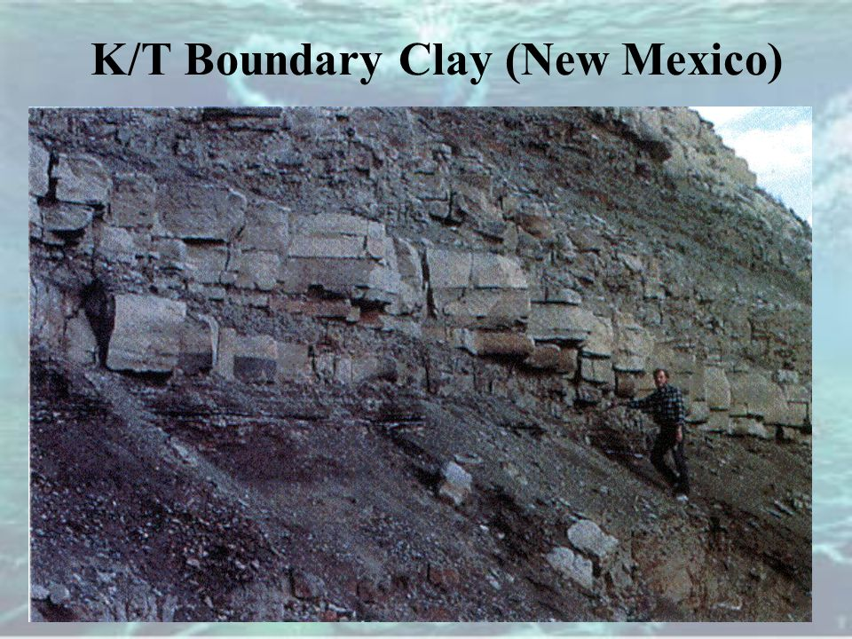 K/T Boundary Clay (New Mexico)