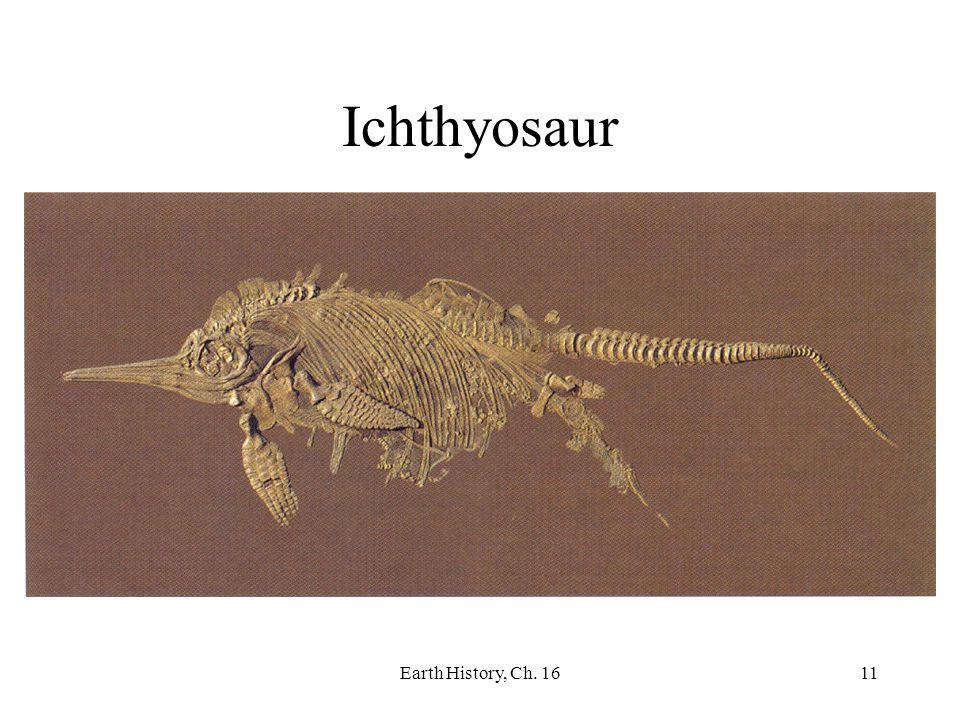 Earth History, Ch. 1611 Ichthyosaur
