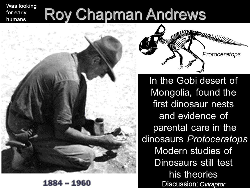 Roy Chapman Andrews In the Gobi desert of Mongolia, found the first dinosaur nests and evidence of parental care in the dinosaurs Protoceratops Modern