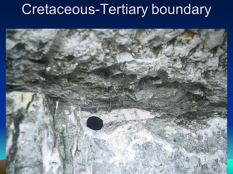 Cretaceous-Tertiary boundary