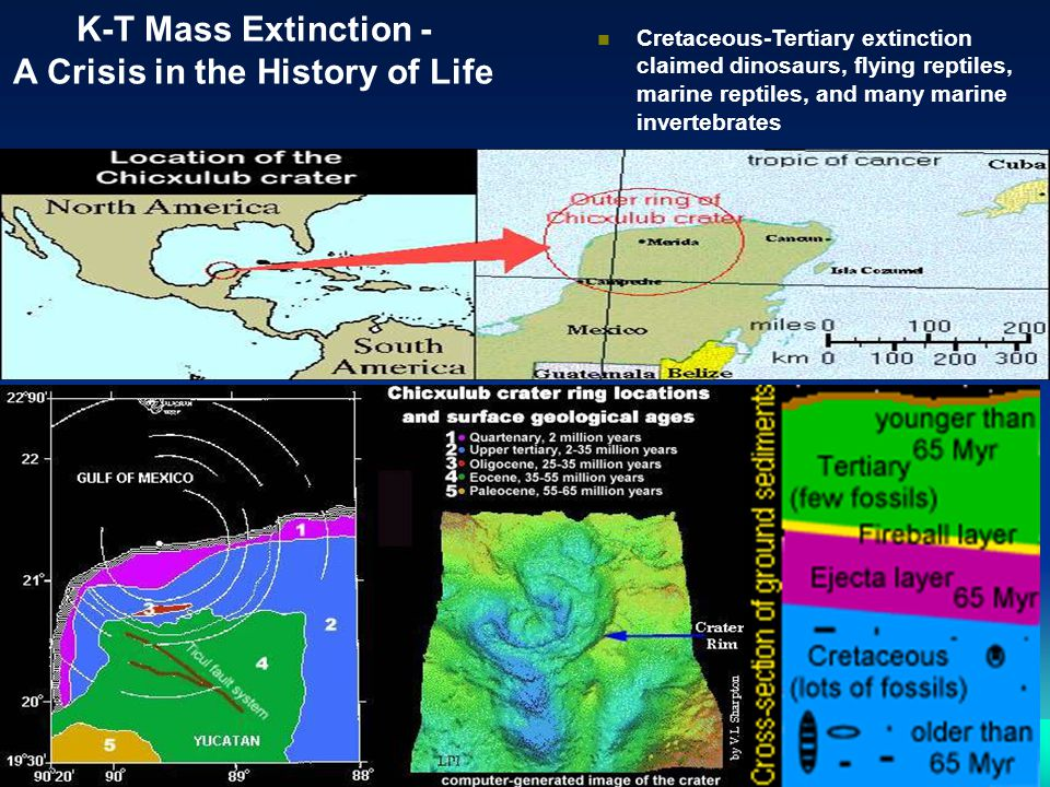K-T Mass Extinction - A Crisis in the History of Life n Cretaceous-Tertiary extinction claimed dinosaurs, flying reptiles, marine reptiles, and many m