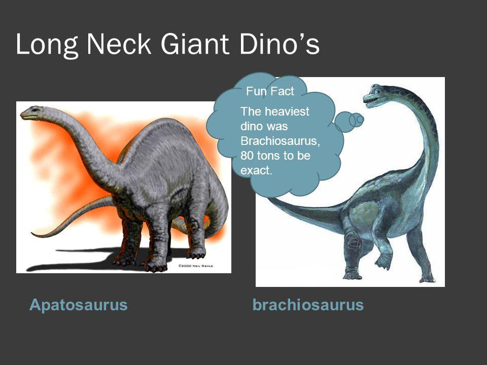 Long Neck Giant Dino's Apatosaurusbrachiosaurus Fun Fact The heaviest dino was Brachiosaurus, 80 tons to be exact.
