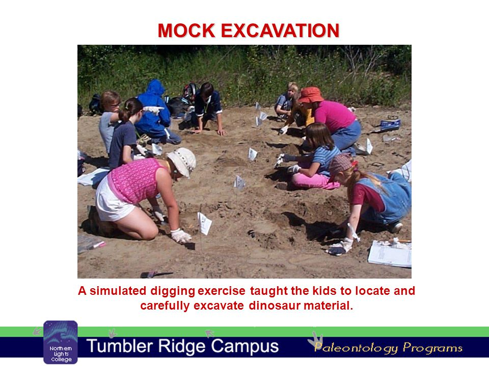 A simulated digging exercise taught the kids to locate and carefully excavate dinosaur material.