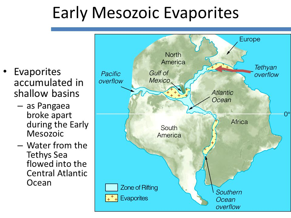 Evaporites accumulated in shallow basins – as Pangaea broke apart during the Early Mesozoic – Water from the Tethys Sea flowed into the Central Atlantic Ocean Early Mesozoic Evaporites