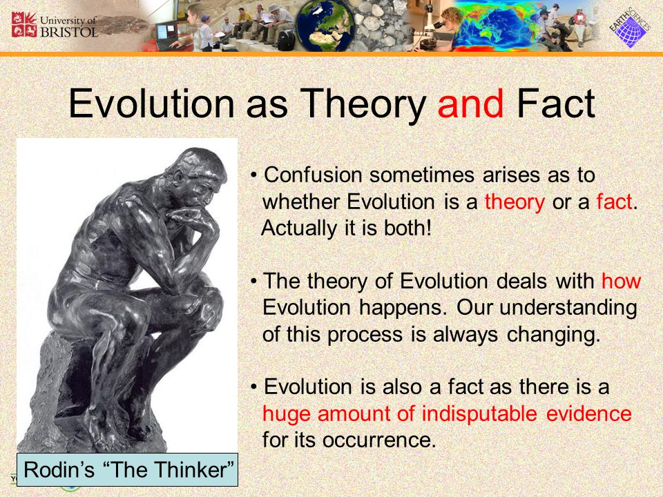 Evolution commons.wikimedia.org/wiki/Image:Charles_Darwin_1881.jpgcommons.wikimedia.org/wiki/Image:DNA_double_helix_vertikal.PNG