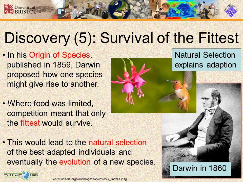 Discovery (6): Huxley v.
