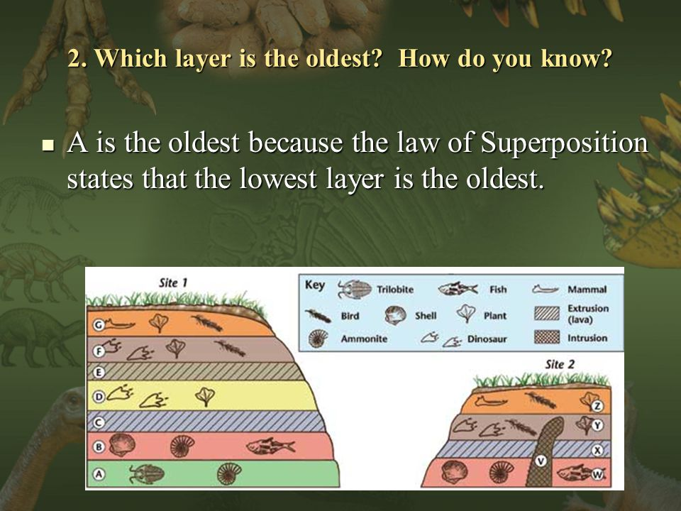 2. Which layer is the oldest. How do you know.