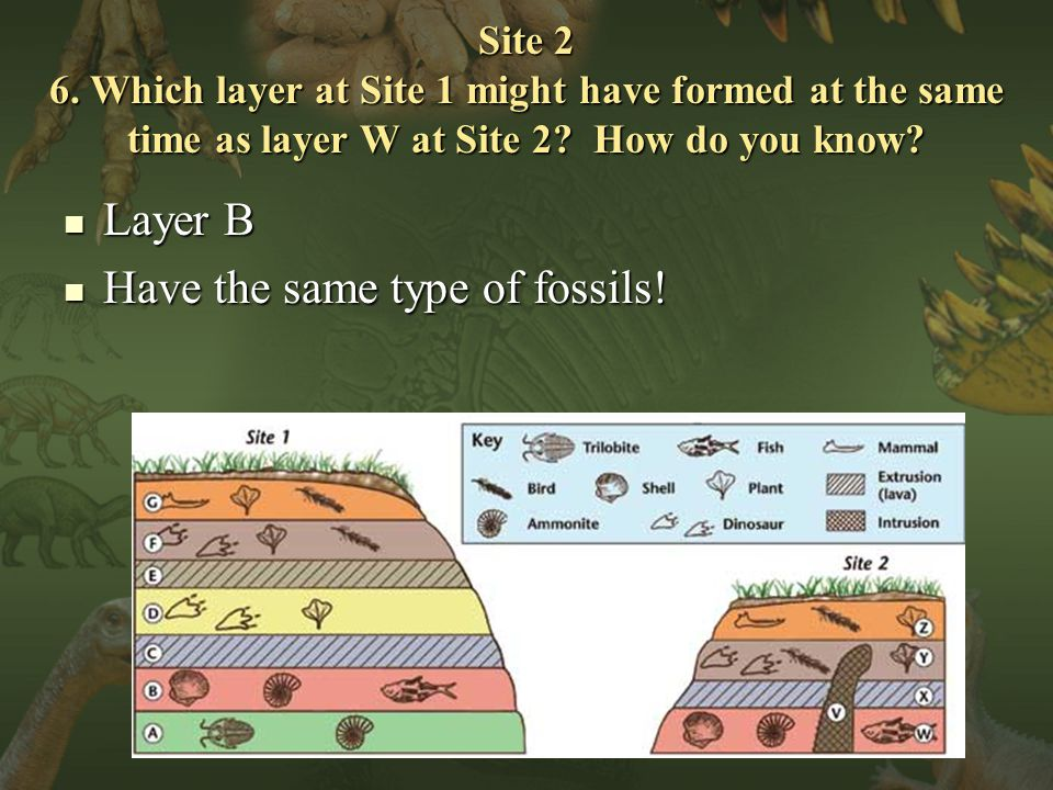 Site 2 6. Which layer at Site 1 might have formed at the same time as layer W at Site 2.