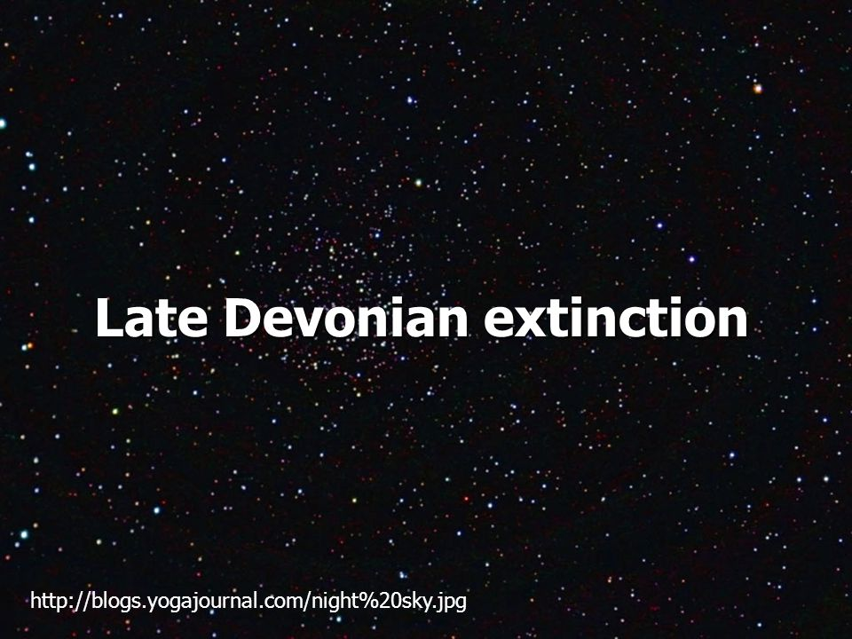 Late Devonian extinction http://blogs.yogajournal.com/night%20sky.jpg