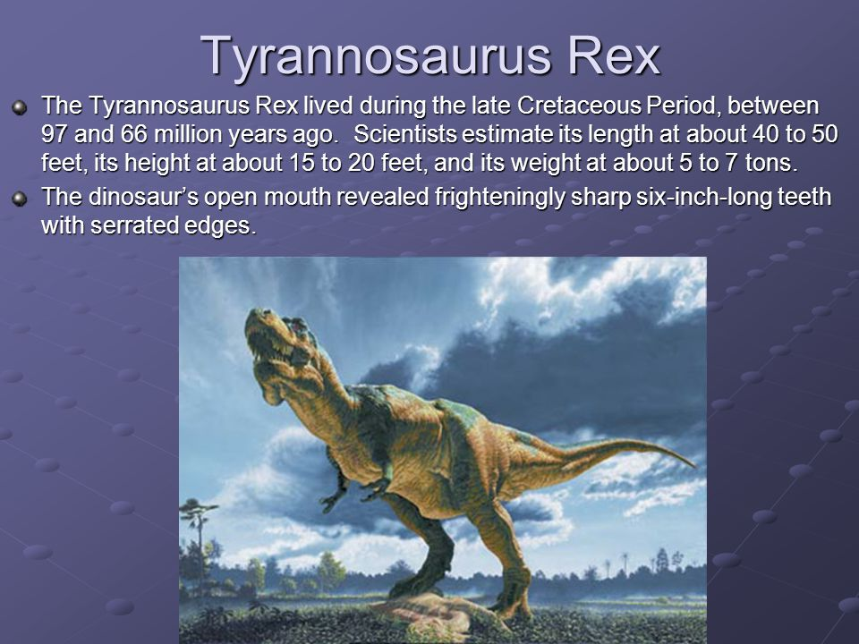 Tyrannosaurus Rex The Tyrannosaurus Rex lived during the late Cretaceous Period, between 97 and 66 million years ago.