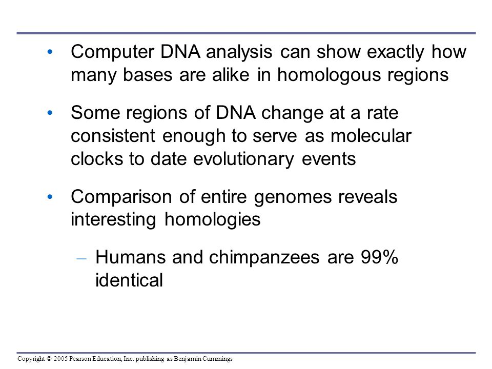 Copyright © 2005 Pearson Education, Inc. publishing as Benjamin Cummings Computer DNA analysis can show exactly how many bases are alike in homologous