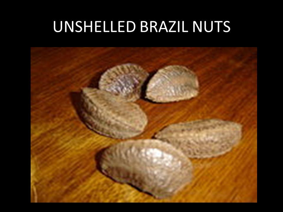 UNSHELLED BRAZIL NUTS