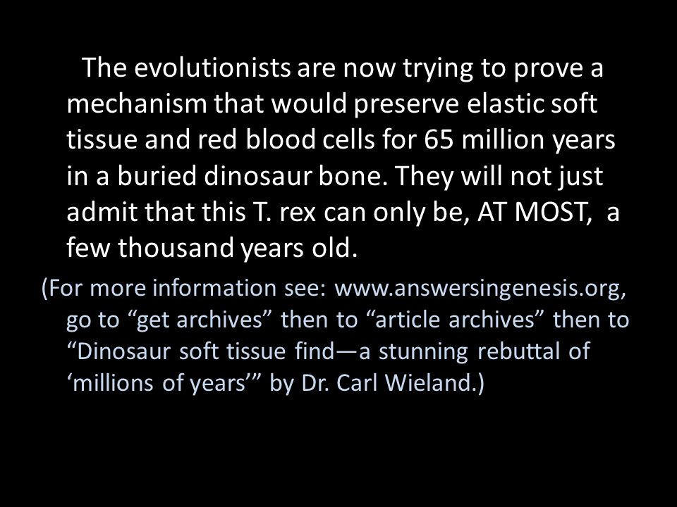 The evolutionists are now trying to prove a mechanism that would preserve elastic soft tissue and red blood cells for 65 million years in a buried din