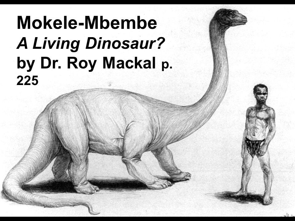 Mokele'mbembe with native Mokele-Mbembe A Living Dinosaur? by Dr. Roy Mackal p. 225