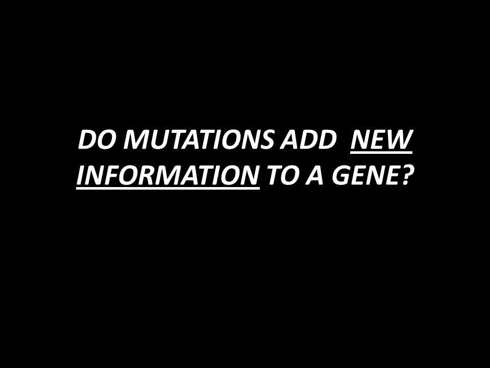 DO MUTATIONS ADD NEW INFORMATION TO A GENE?