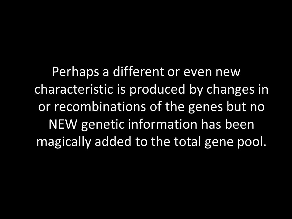 Perhaps a different or even new characteristic is produced by changes in or recombinations of the genes but no NEW genetic information has been magica