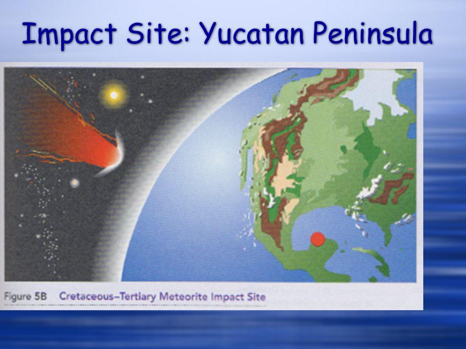 Impact Site: Yucatan Peninsula