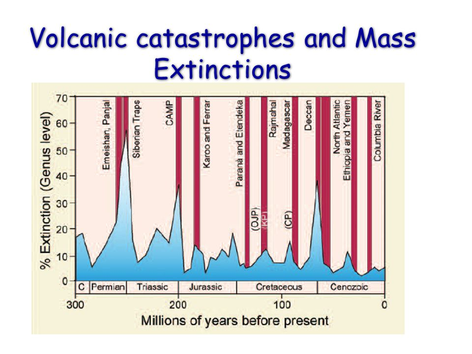 Volcanic catastrophes and Mass Extinctions