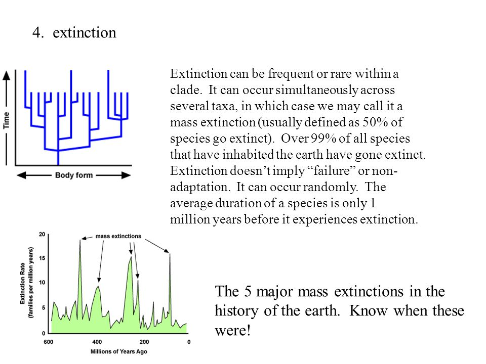 4. extinction Extinction can be frequent or rare within a clade. It can occur simultaneously across several taxa, in which case we may call it a mass