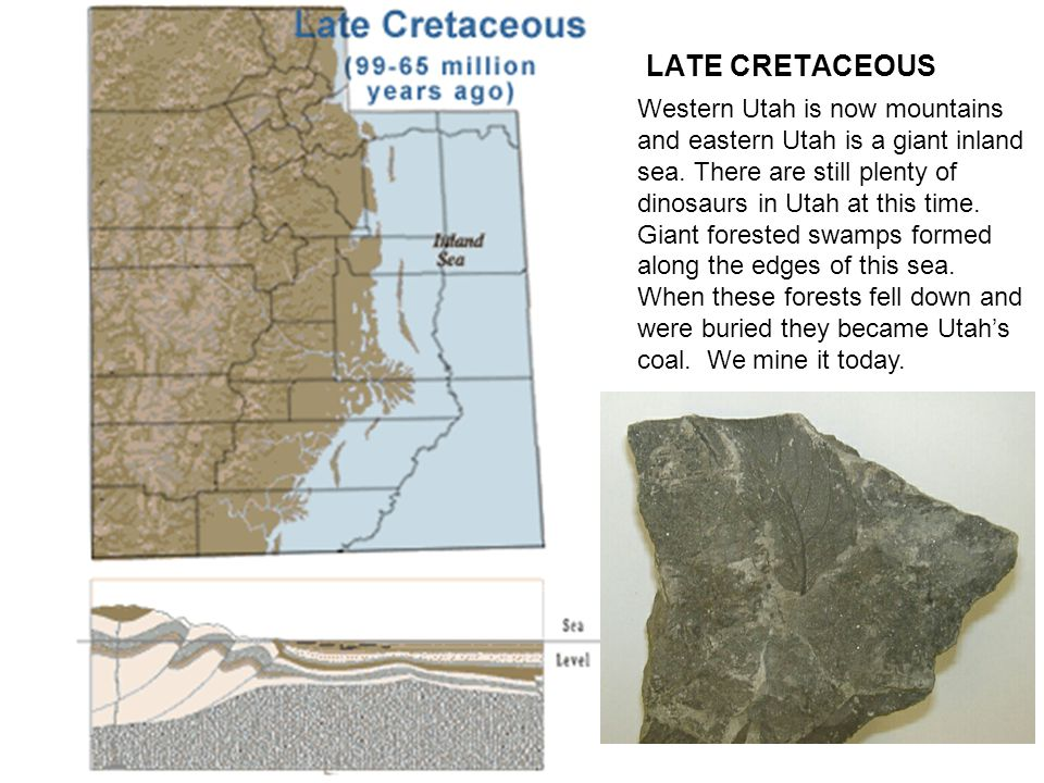 LATE CRETACEOUS Western Utah is now mountains and eastern Utah is a giant inland sea.
