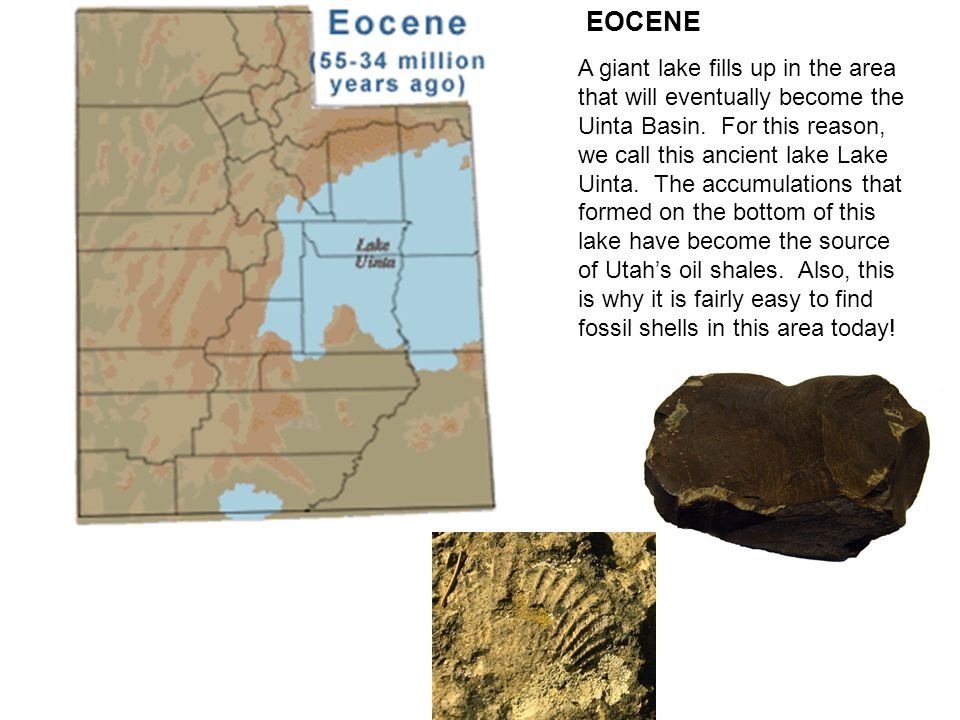 EOCENE A giant lake fills up in the area that will eventually become the Uinta Basin.