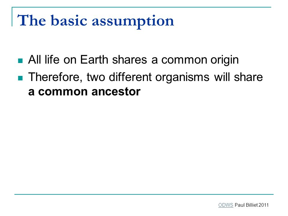 The basic assumption All life on Earth shares a common origin Therefore, two different organisms will share a common ancestor ODWSODWS Paul Billiet 2011