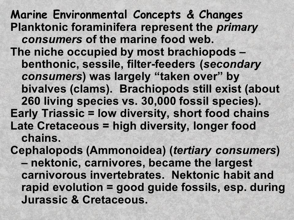 Dinosaur Cladogram Archosaur common ancestor Herbivores Carnivores