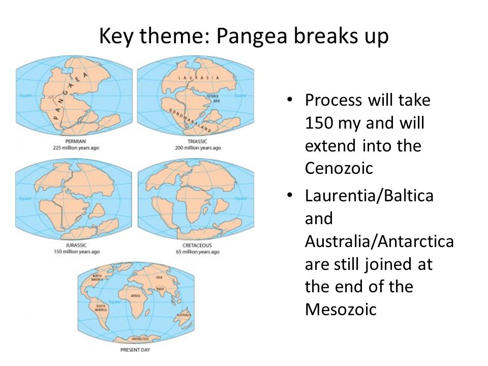 Key theme: Pangea breaks up Process will take 150 my and will extend into the Cenozoic Laurentia/Baltica and Australia/Antarctica are still joined at the end of the Mesozoic