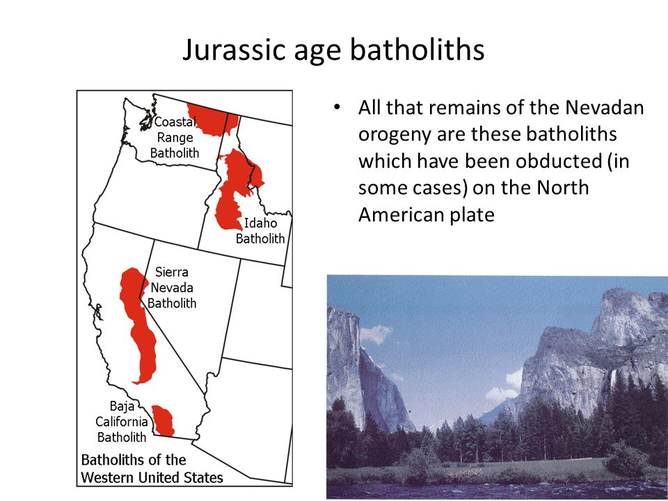 Jurassic age batholiths All that remains of the Nevadan orogeny are these batholiths which have been obducted (in some cases) on the North American plate
