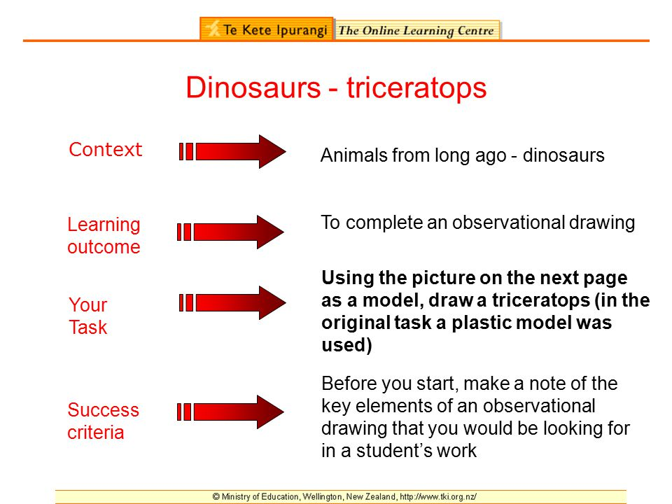 The purpose of success criteria What are we looking for.