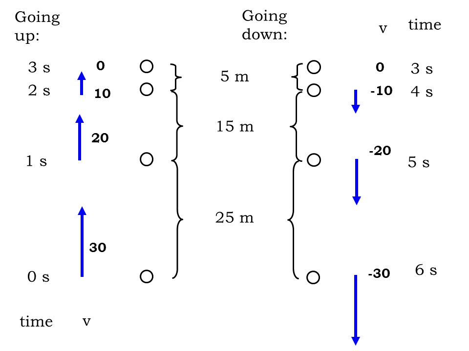 10 v (m/s) t (s) 12 3 20 5 m 15 m 25 m 30 45 6 -30 -20 -10 5 m 15 m 25 m going up coming down positive d negative d top slope = ______________ throughout -10 m/s 2
