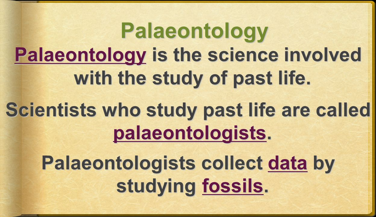 Palaeontology Palaeontology is the science involved with the study of past life.