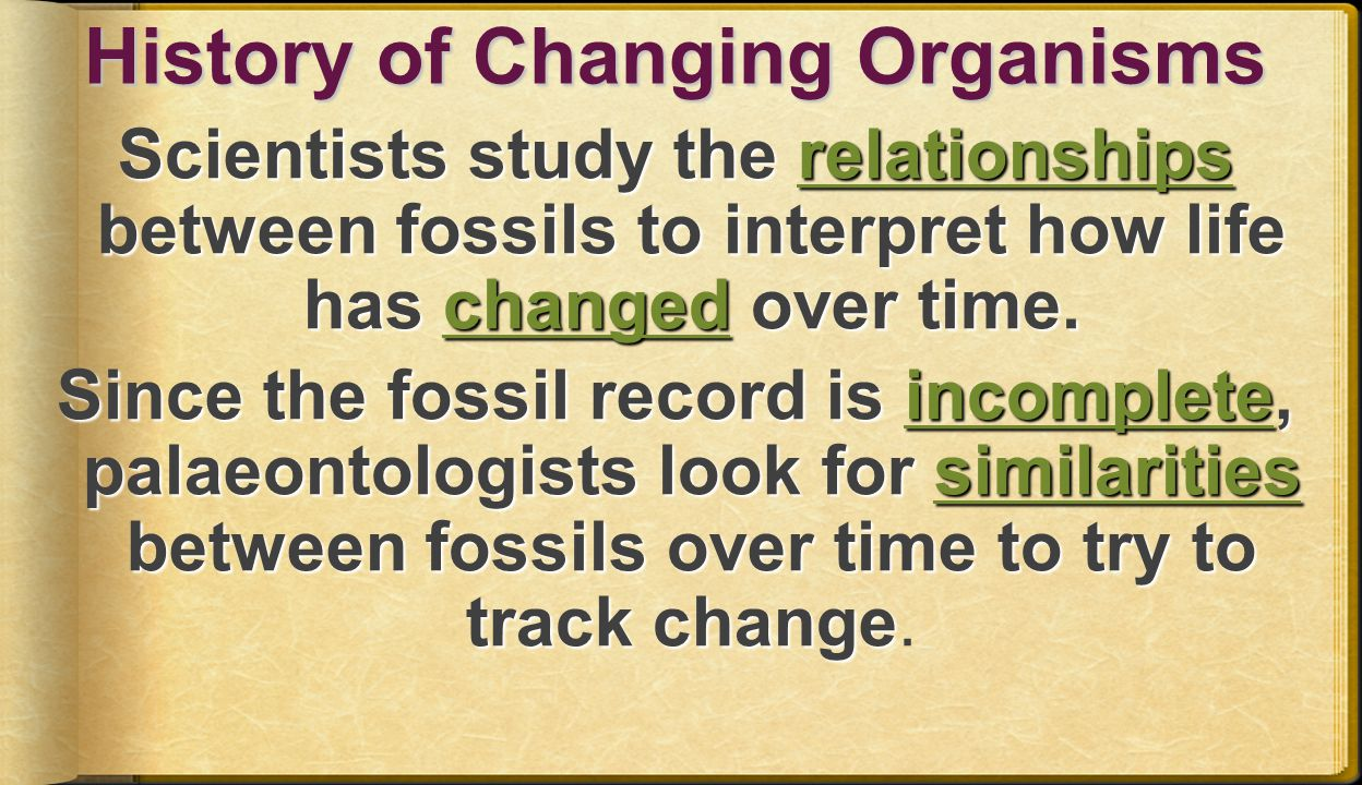 History of Changing Organisms Scientists study the relationships between fossils to interpret how life has changed over time.