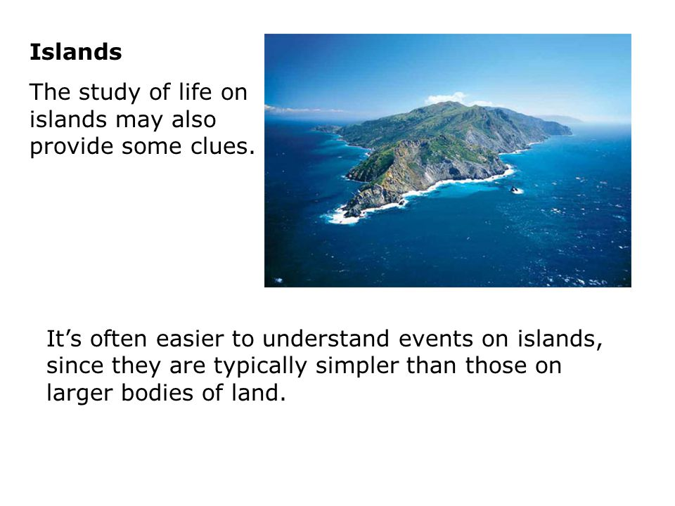 Islands The study of life on islands may also provide some clues.