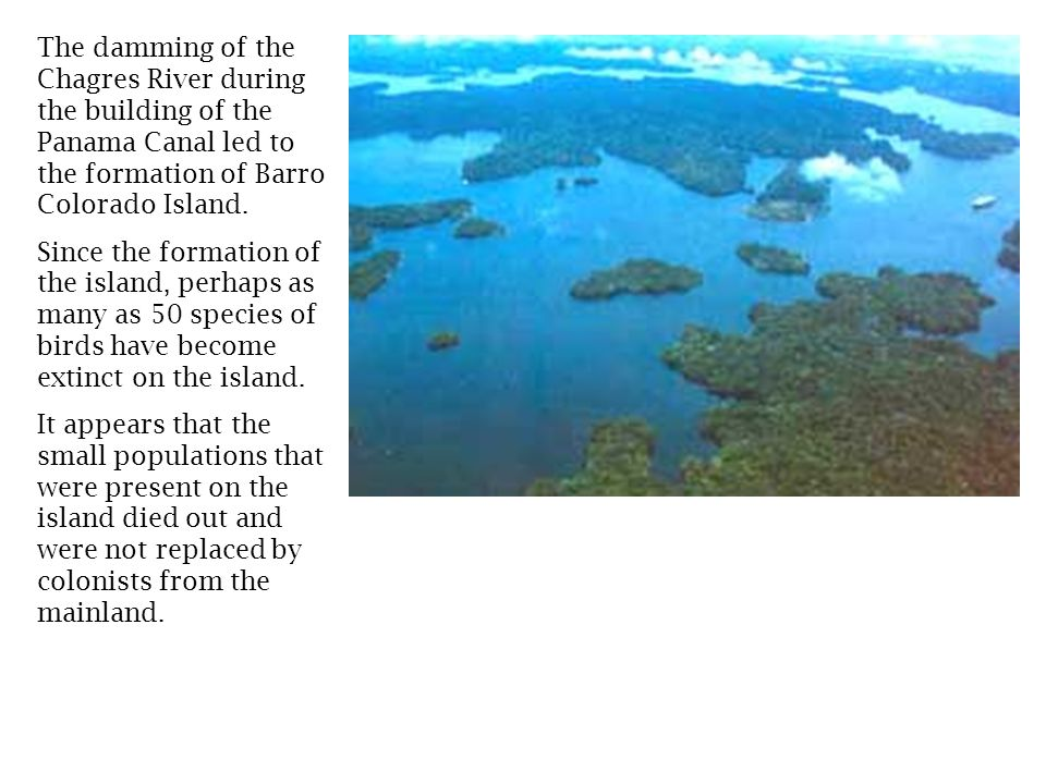 The damming of the Chagres River during the building of the Panama Canal led to the formation of Barro Colorado Island.