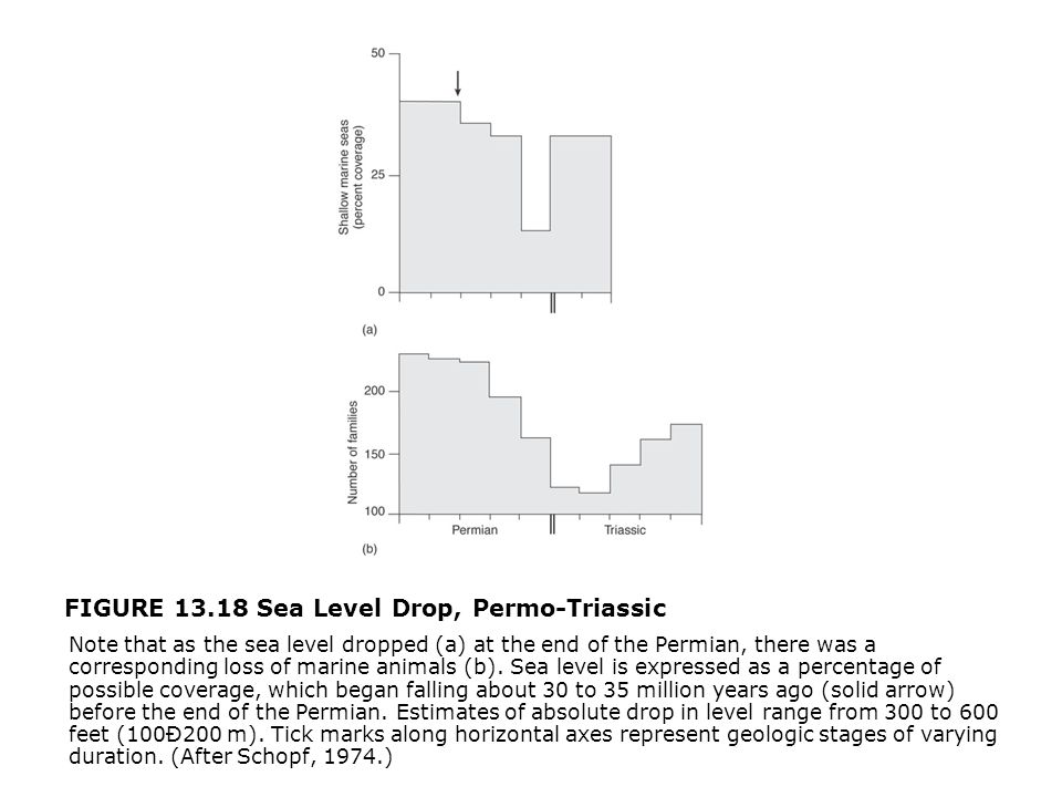 FIGURE 13.18 Sea Level Drop, Permo-Triassic  Note that as the sea level dropped (a) at the end of the Permian, there was a corresponding loss of marine animals (b).