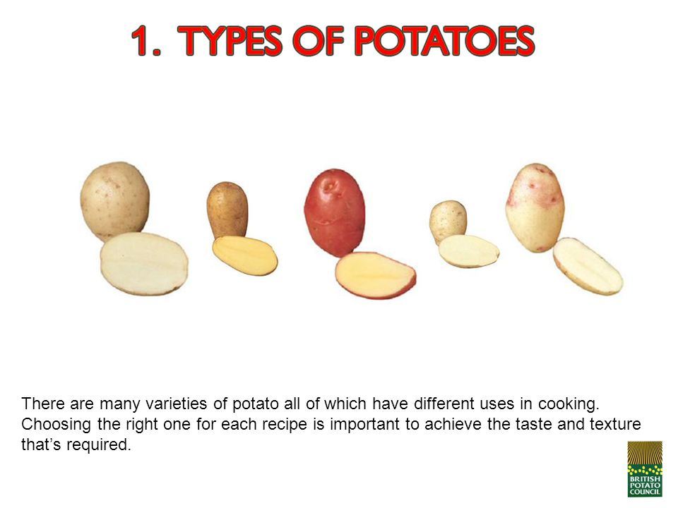 There are many varieties of potato all of which have different uses in cooking. Choosing the right one for each recipe is important to achieve the tas