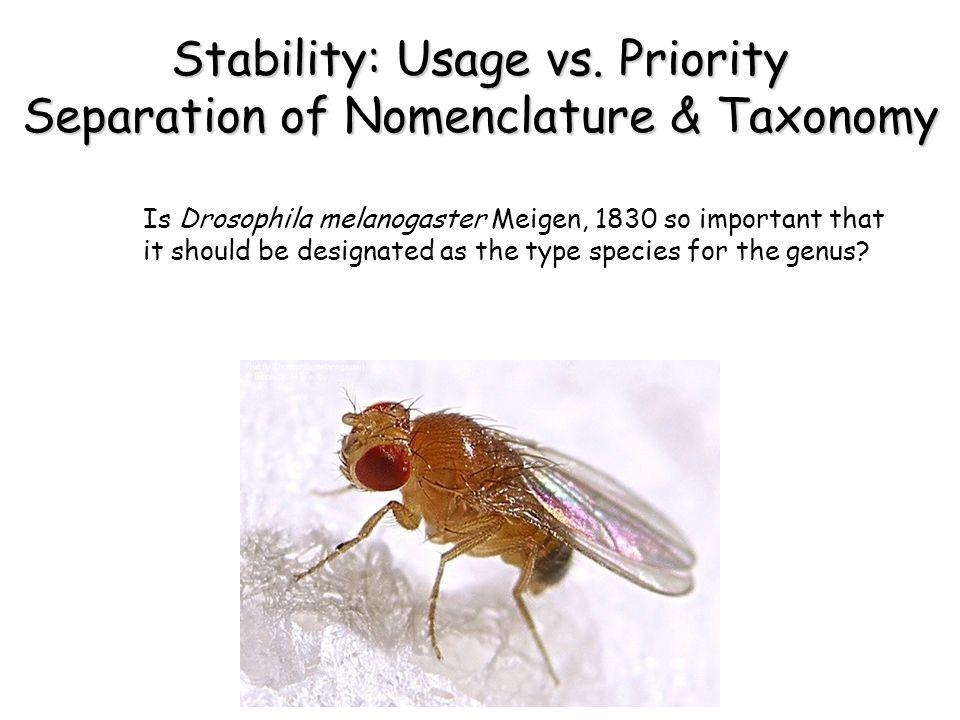 Stability: Usage vs.
