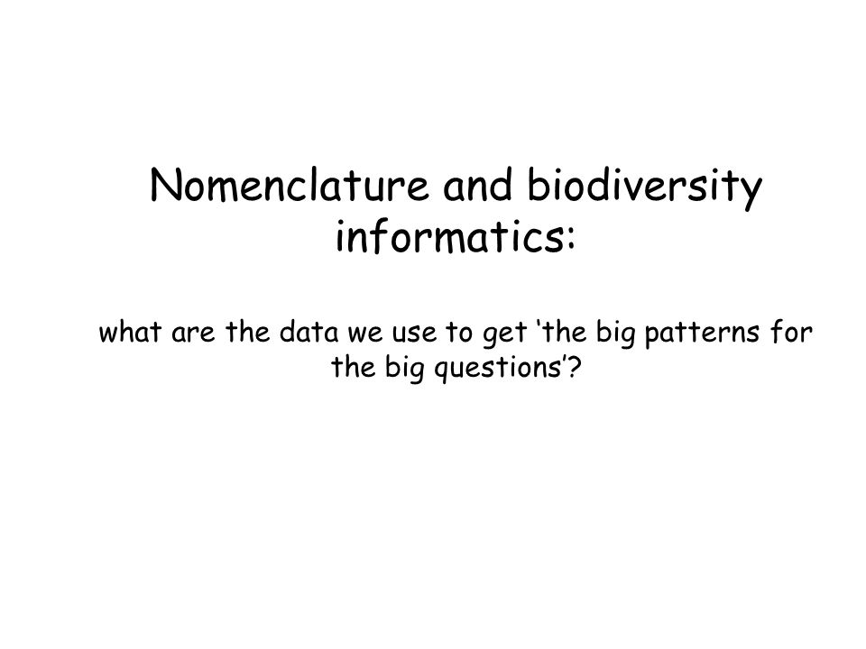 Nomenclature and biodiversity informatics: what are the data we use to get 'the big patterns for the big questions'