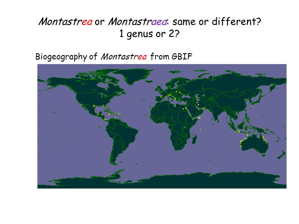 Montastrea or Montastraea: same or different 1 genus or 2 Biogeography of Montastrea from GBIF