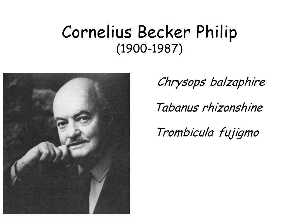 Cornelius Becker Philip (1900-1987) Chrysops balzaphire Tabanus rhizonshine Trombicula fujigmo