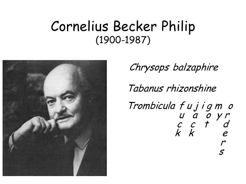 Cornelius Becker Philip (1900-1987) Chrysops balzaphire Tabanus rhizonshine Trombicula f u j i g m o u a o y r c c t d k k e r s