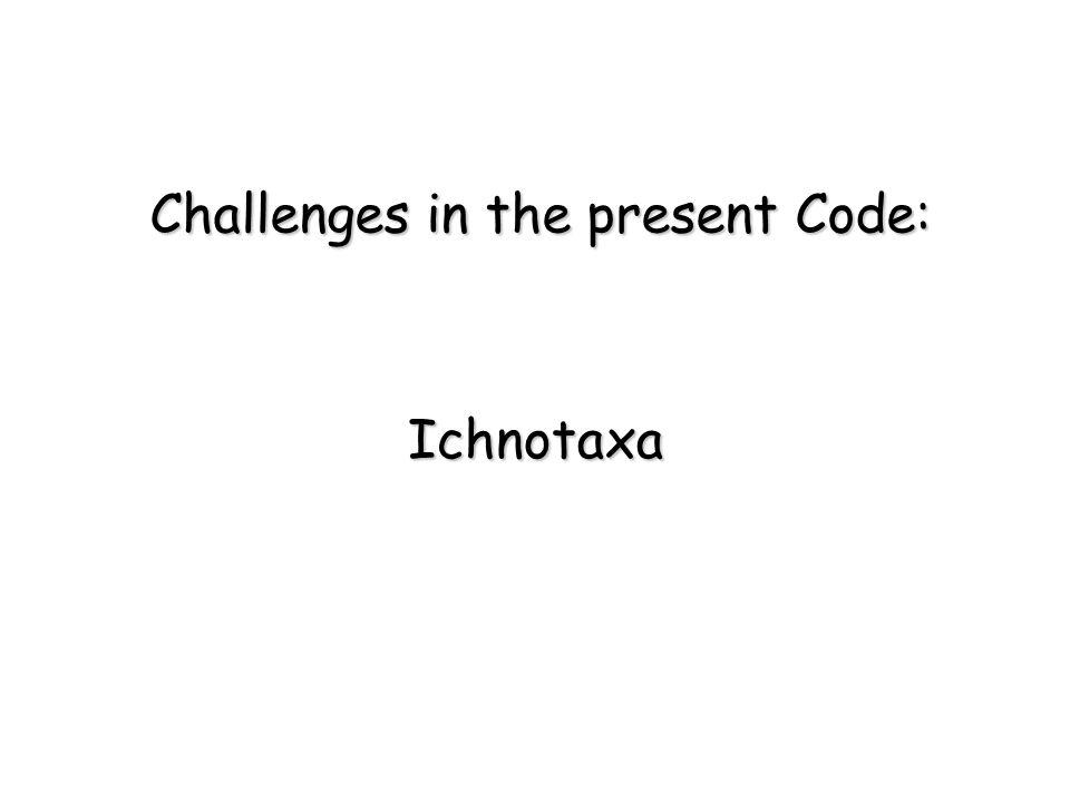 Ichnotaxa