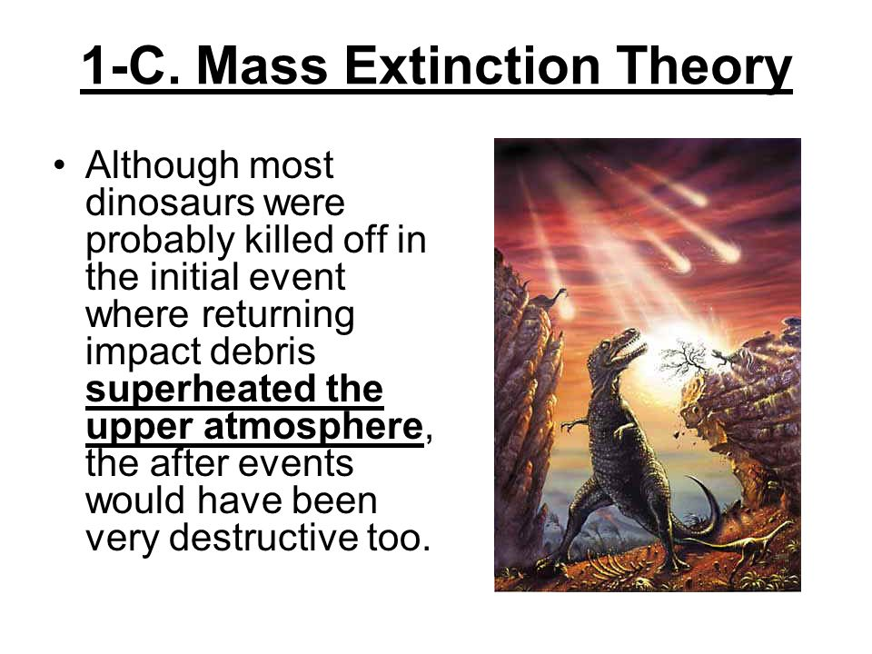 1-C. Mass Extinction Theory Although most dinosaurs were probably killed off in the initial event where returning impact debris superheated the upper