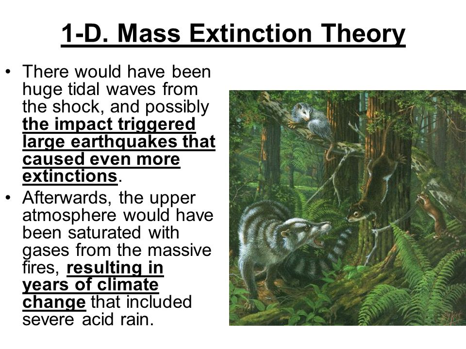 1-D. Mass Extinction Theory There would have been huge tidal waves from the shock, and possibly the impact triggered large earthquakes that caused eve