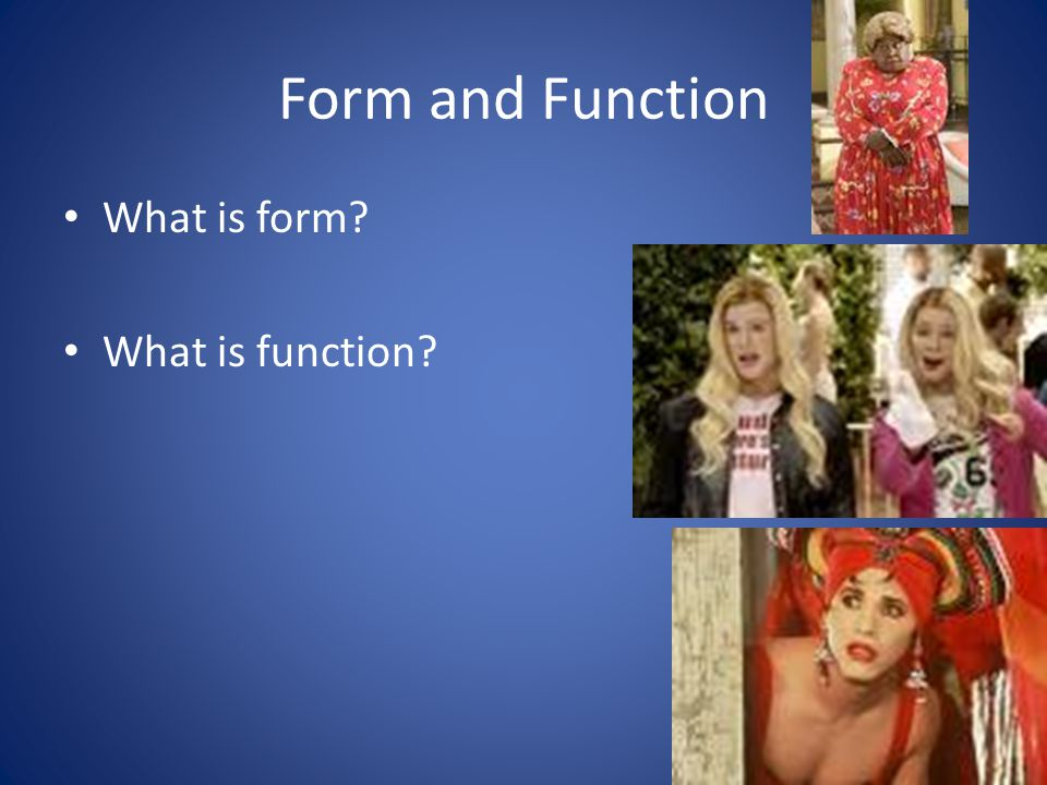 Form and Function What is form? What is function?