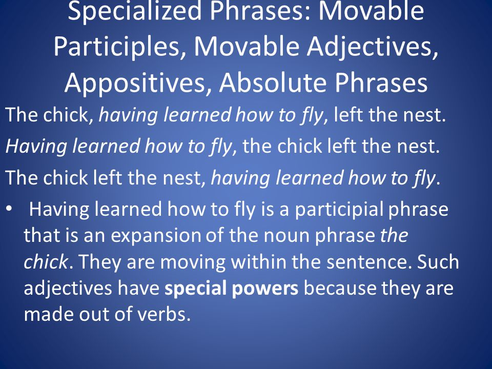 Specialized Phrases: Movable Participles, Movable Adjectives, Appositives, Absolute Phrases The chick, having learned how to fly, left the nest. Havin