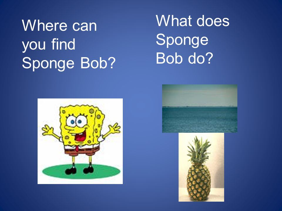 Where can you find Sponge Bob? What does Sponge Bob do?